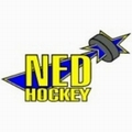 NED Hockey Nymburk